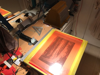 Sequoia test prints