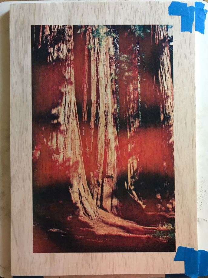 Sequoia wood panel two color