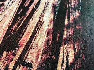 Sequoia wood print detail
