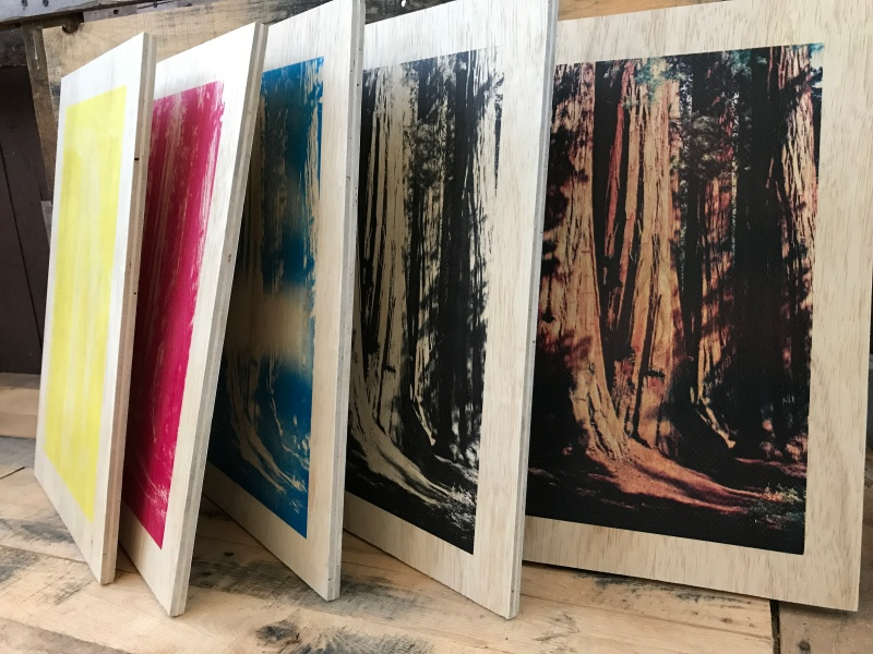 Sequoia wood panel screen prints CMYK