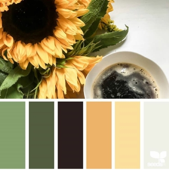 Wander Color Inspiration by @designseeds